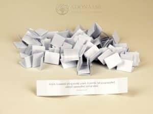 Na bielom papieri